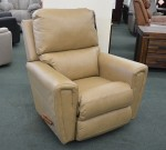 Carter Rocker Recliner